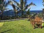 One of guests' favorite spots to watch whales, dolphins and the sea from the back yard