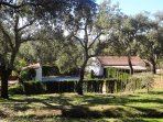 Encinas, alcornoques y zonas verdes que rodean la casa
