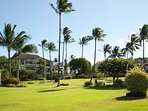 Poipu Kai resort is lushly landscaped.  Buildings are no more than two stories.