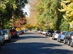 Ladd Ave. The streets are lined with 100 yr Elm Trees. First organized eighborhood on the West Coast