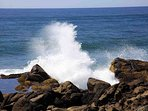 Watch the surf crash on the basalt cliffs, and explore the fascinating tide-pools, but always keep an eye an the surf!