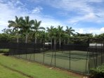 Two Hard Surface Outdoor Lighted Tennis and Pickleball Courts and Club On-Site