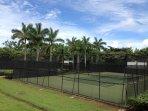 Due dura di superficie esterna da tennis illuminati e Pickleball Corti e Club On-Site