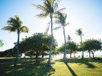 Magic Island Park is Just a Short Walk from the Ala Moana Hotel