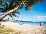 Relaxing by the Palm Tree's at the Ala Moana Beach