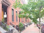 South End neighborhood tree lined brownstone street