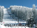 The AZ Snowbowl offers skiing, sledding, snowplay and more!