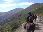 Uno de los muchos paseos a caballo