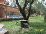 Jardín y lugar para desayuno afuera.