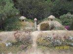 Jardín en el techo de la casa