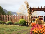 The pool-side garden in the fall, overlooking the Smokies