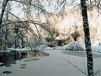 l'étang de pêche en hiver