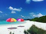 Private Bikini Island