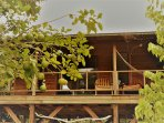 Fully equipped self catering treetop cabin, ideal for watching the wildlife