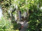 Croftsbrook wisterior