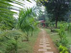 Lush green entry to the farm!