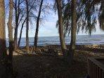 Serenity Shores