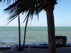 Our Shoreline