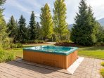 Enjoy the Private Hot Tub