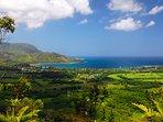 Hanalei Bay a day trip worth taking:
