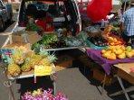 Farmers Market in Koloa on Mondays or Poipu on Wednesdays.