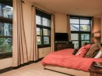 Wonderful natural light and a flat screen TV in Master