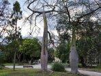 Jardines de Viveros: uno de los pulmones verdes de la ciudad.