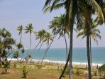 Oceans Edge - Absolute beachfront villa