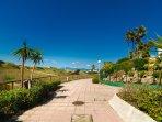 Playa de la Vibora urbanization, exotic vegetation