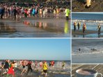 Join the Boxing Day / New Year's Day Dip madness... the Christmas Season is magical.