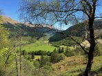 Overlooking the Glenbranter Forest in Summer.