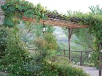 Pergola above the terrace