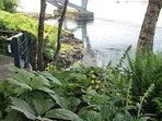 Large waterfront deck & cottage garden