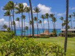 Tropical grounds of Napili Shores Resorts - overlooking the blue Pacific.