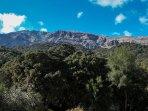 Senderismo de lujo desde la puerta de Casa Martijín. Sierra de Grazalema y Serranía de Ronda