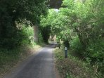 This is our lane which takes you to the North downs.