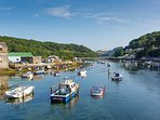 Tranquil Looe river