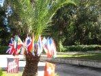 Enjoy our international Swiss-Floridian BNB-homestay.