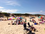 Fun in the sun! -Ocean side!  Eastham Cape Cod - New England Vacation Rentals
