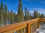 The dense pine-filled area is perfect for snow-shoeing!