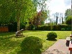 Lush, green garden in the Summer