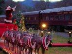 Polar Express on the Great Smokey Mountain Railway in nearby Bryson City. (20 miles away)