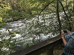 Typical Nantahala River picture.  This is 5 minutes from the cabin.