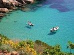 Villa Calypso, Giglio Island with wonderful Mediterranean beaches