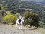 Horse-riding lessons can be arranged for your holiday - fantastic views while you learn to ride!!!