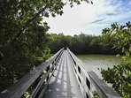 Bridge over the Bayou. Look for manatee, river otter and many birds -even roseate spoonbills.