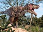 West Midlands Leisure Jurassic Park