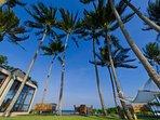 Majapahit Beach Villas - Samudra garden