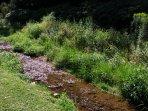 Baird's Creek in Banner Elk, NC. #waterfront
