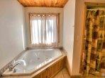 Main Level Bath and Walk In Shower